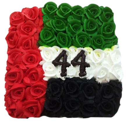 square National Day Cake